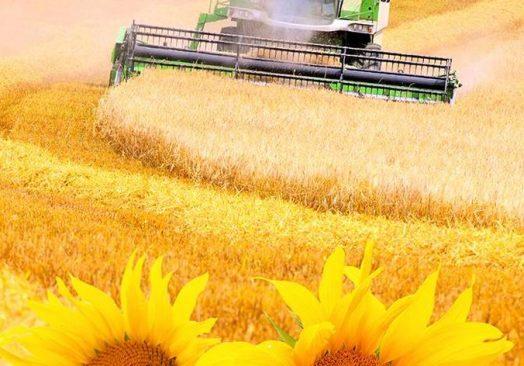 Biga Tarım, Hayvancılık Sanayi ve Gıda Fuarı